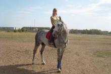 Прокат лошадей на казанском ипподроме